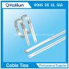 De la escala caliente de 2017 sola atadura de cables del bloqueo de la lengüeta Ss de la venta en alto resistente a la corrosión
