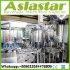 Sistema de enchimento da água pura mineral pura da máquina de empacotamento da água