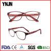 Vente chaude de bonne qualité des fabricants de lunettes Tr90 pour enfants (YJ-G81108)