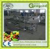 Limpar a fábrica de tratamento da fruta dos vegetais para a venda