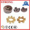 Ml8 Mt8 Pflaume-Geformter Gummi und Kupplung/Koppler für Aufbau-Hebevorrichtung-Motor