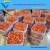 5  clavos plásticos del casquillo usados para el material para techos