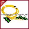 12 câbles fibre optiques uni-mode des faisceaux MPO