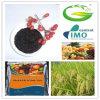 Fertilizante orgânico concentrado elevado da alga do extrato da fonte do Kelp das algas