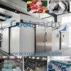 Kühlraum für Nahrungsmittelspeicher oder Rohstoff-Speicher