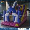 La trasparenza gonfiabile del coniglio del PVC per il parco di divertimenti scherza il gioco del giocattolo