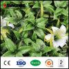 Leicht zusammengebauter preiswerter grüner künstlicher Pflanzenzaun mit Blumen