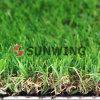 Sunwing Artificial Carpet Grass para Football (PPE)