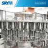 Imbottigliatrice dell'acqua potabile/strumentazione complete