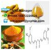 Curcumina solubile nell'olio della polvere dell'estratto della curcuma per condimento 458-37-7