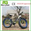 販売のための中断前部フォークのEbike 48V 350Wの脂肪質のタイヤの電気バイクとのAlu