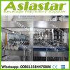 Automatisches Glas abgefüllter Bier 330ml/500ml/750ml Rinser Einfüllstutzen-Mützenmacher, Zeile produzierend