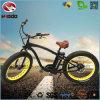 Scooter électrique de plage de la vente 750W de bicyclette de pouvoir de vélo chaud de moteur avec le gros pneu