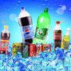 máquina de rellenar del agua de soda de la botella del animal doméstico 5000bph