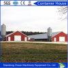 低い予算は現代デザインの鉄骨構造の家禽の小屋をカスタマイズした