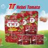 Fábrica de Transformação de pasta de tomate
