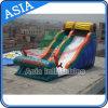 Sonnenschein-Delphin-Spielplatz-aufblasbares Wasser-Plättchen
