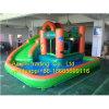 Delphin-minimales aufblasbares Wasser-Plättchen mit Pool