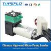 Kleine Membranluftpumpe Gleichstrom-6V 12V 24V/Minivakuumpumpe/Membranpumpe/Druckpumpe/Kompressor-Luftpumpe (Gleichstrom-schwanzloser Motor)