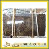 Dark Polished Emperador Marble Slabs pour Wall Flooring (YQG-MS1021)