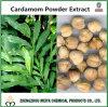 Extrait normal de poudre de graine de cardamome d'approvisionnement d'usine avec Cardamonin 98%