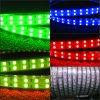 Ändernde RGB-doppelte Zeile LED-Streifen 120LED/M 110V 220V färben