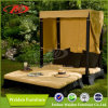 Base di sofà esterna favolosa mobilia esterna di vimini/del rattan (DH-8660)
