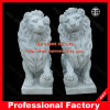 Main Carved Marble Lion Statue pour Home Decoration