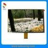 Индикация дюйма TFT LCD высокой яркости 9.0 (PS090DWPAW127-D01)