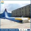Buen tipo inflable diapositiva del tiburón del deporte de agua del precio