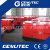 Dieseltyp des generators des chinesischen Motor-13kVA-250kVA (wassergekühltes, leises)