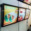 Tarjetas retroiluminadas del menú de los alimentos de preparación rápida para la muestra del menú del restaurante
