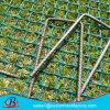 草の保護網かプラスチック網の中国の工場