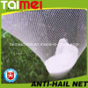 Vingin HDPE 반대로 Hail Fruit 및 Vegetables Protection Net
