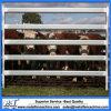 панель скотного двора рельсов овала 1.8X2.1m 115X42mm