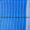 Antihagel-schützen Plastikineinander greifen-Netz für Obstbaum