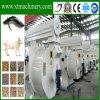Biomassa agricola, palma, scafo del riso, granulatore della pallina dell'alimentazione animale