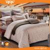 Coperchio caldo del Duvet del Comforter del jacquard di vendita impostato (DPF060806)