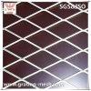 직류 전기를 통한 강철에 의하여 확장되는 금속 메시 (중국 제조자)