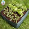 2015's Hot Sale Growing Bag per Your House