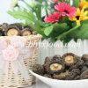 Крышка 3-4cm высушила ровный гриб Shiitake к овощу Сингапур