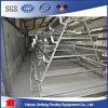 닭 계란 층 농장을%s 판매 가금 장비를 위한 닭 감금소