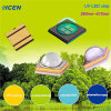 DEL UV 365nm 385nm 395nm pour corriger UV, module UV