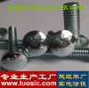 Wagen-Schraubbolzen-Hersteller DIN603 wir Wagen-Schraubbolzen-Wanne|Schutzkappe|Runder quadratischer Ansatz-Hauptschraubbolzen China - Infly Verbindungselemente
