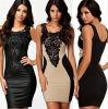 Les femmes sexy court-circuitent la robe mince du MIDI de faisceau filiforme de soirée de douille (50211-1)