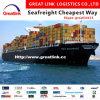 Transporte do frete de oceano de China a United Arab Emirates