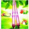 LED-Pflanzenlicht 18W T8 LED wachsen Gefäß-Licht