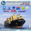 스페인에 심천 또는 광저우 또는 상해 또는 Tianjin Sea Freight FCL/LCL Rates