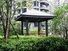 WPC 안뜰 Pavilion 5m*5m (OLDA-6002)