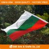 Bandierina/bandiera nazionali della mano del poliestere di promozione su ordinazione